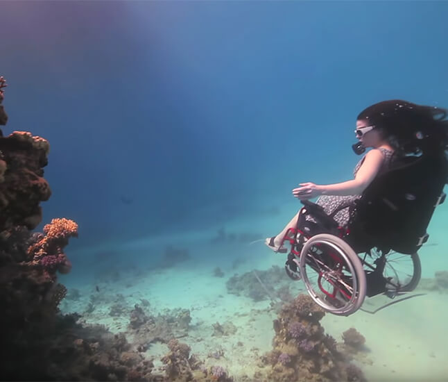 The New Abled